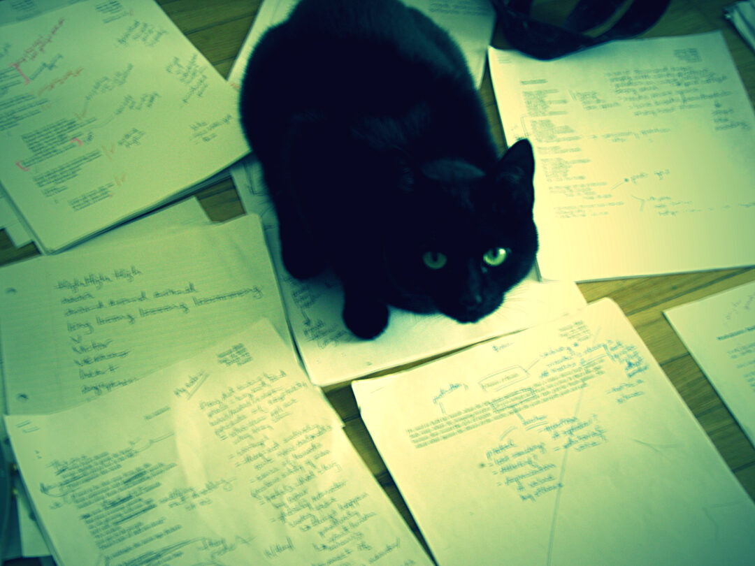 Kitty sitting on top of pages of edited writing